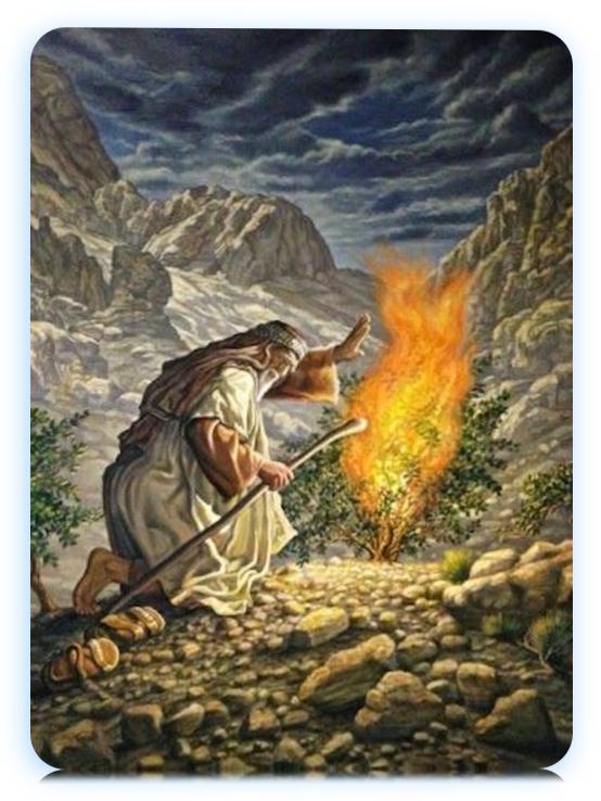 Moises la zarza ardiente del horeb