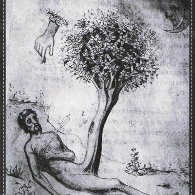 Árbol de la vida fálico alquimia