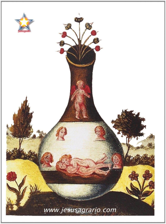 Alquimia nacimiento