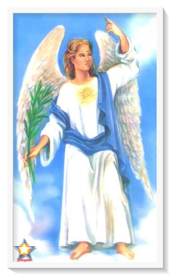 Angel aroch