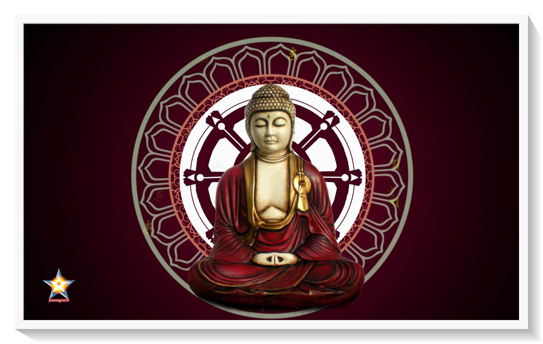 Concentracion meditacion