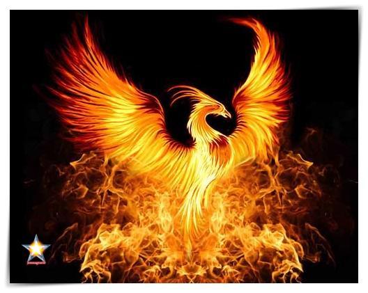 Doctrina del fuego 2