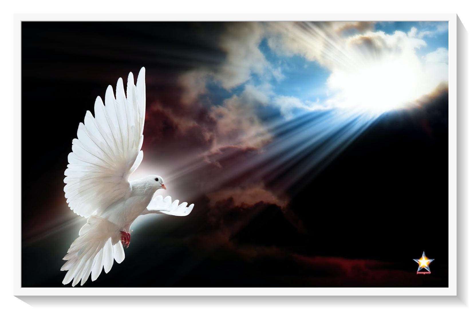 Escuelas alma y espiritu