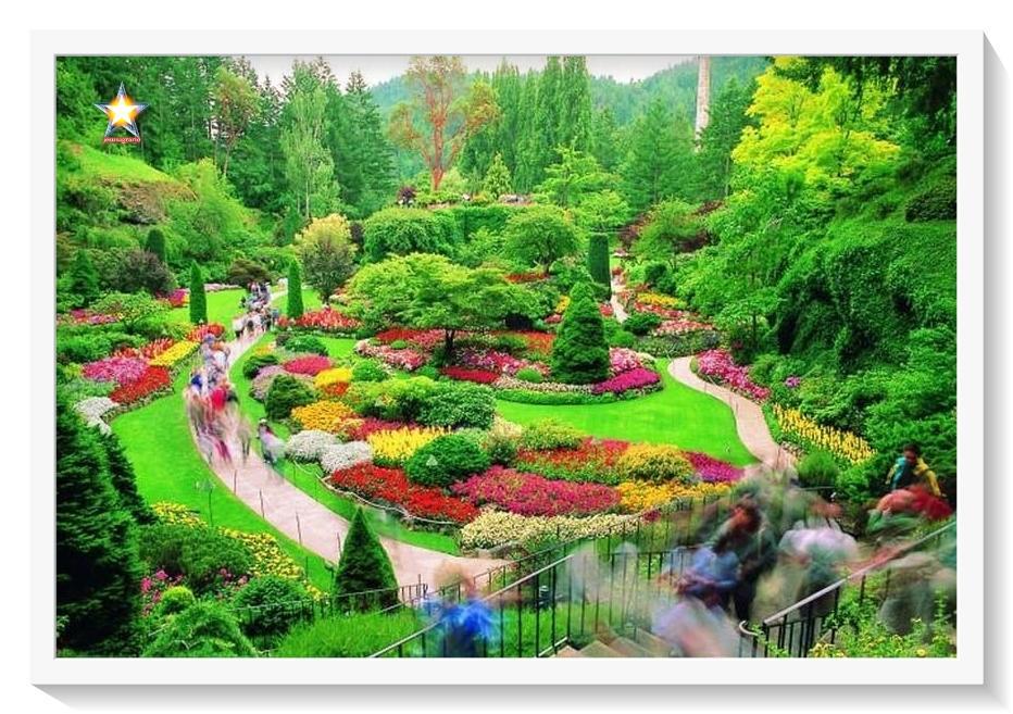 Jardin y jardinero